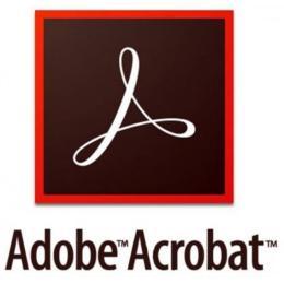 Adobe Acrobat Standard 2020 Windows Russian AOO License